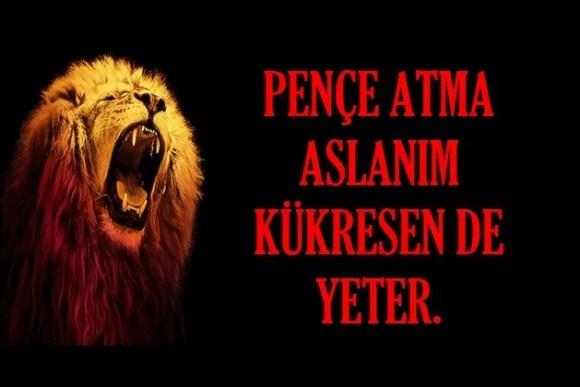 Pençe atma aslanım kükresende yeter - Galatasaray İle İlgili Resimli Sözler - Galatasaray Sözleri Ve Kareografileri, resimli-sozler