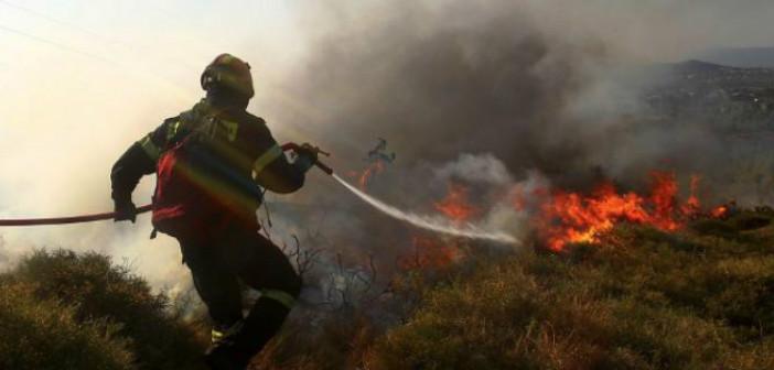 Συνάντηση Περιφέρειας – Π.Σ. για την αντιμετώπιση δασικών πυρκαγιών