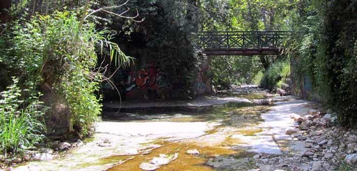 Ο Δήμος Χαλανδρίου γιορτάζει την Παγκόσμια Ημέρα Περιβάλλοντος στη Ρεματιά με την εικαστική παρέμβαση «Ελεύθερος ως Ποταμός»
