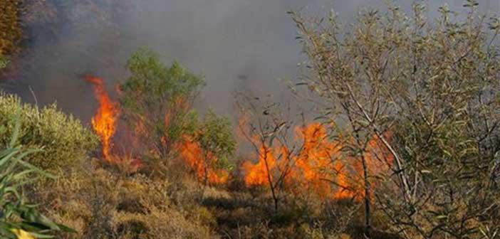 Πυρκαγιά σε οικοπεδικό χώρο στο Κορωπί