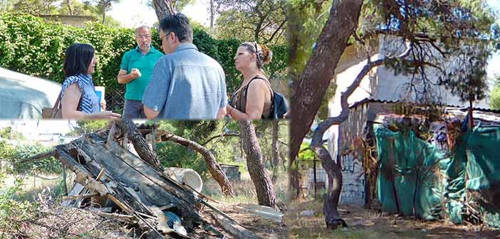 Μ. Πάγκαλος: Αδράνεια δημοτικής Αρχής και Δάσος Κάσδαγλη