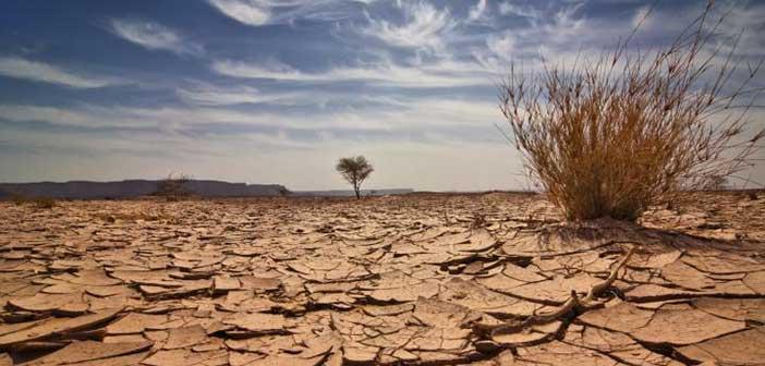 Πρώτη περιφερειακή ενημερωτική ημερίδα για την προσαρμογή της Περιφέρειας Δυτικής Ελλάδος στην κλιματική αλλαγή