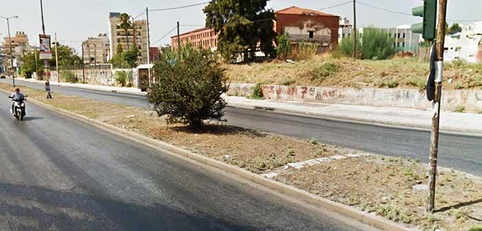 Δενδροφύτευση στη Λεωφ. Θηβών από τον Δήμο Νίκαιας – Αγ. Ι. Ρέντη