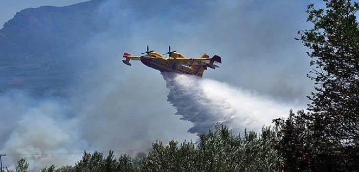 Μεγάλη φωτιά στα Χανιά: Καίει δασική έκταση στη Σπίνα – Πύρινα μέτωπα σε Κάρυστο και Γέρακα