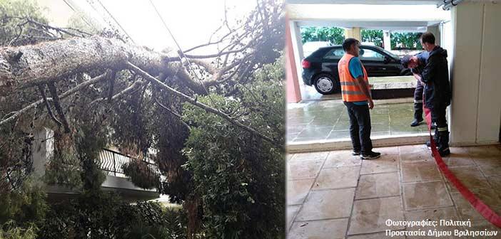 Πτώση δένδρων και πλημμυρισμένα κτήρια στα Βριλήσσια – Επί ποδός η Πολιτική Προστασία του Δήμου