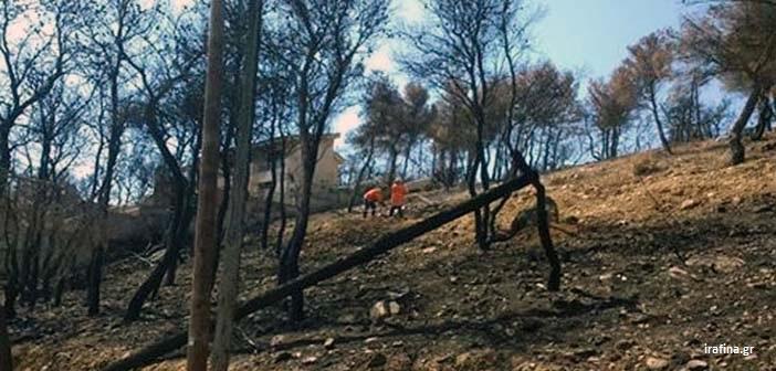 Έσβησε έγκαιρα η φωτιά που ξέσπασε σε οικόπεδο στον Νέο Βουτζά