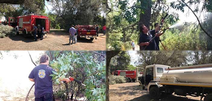 Άμεση κατάσβεση φωτιάς στο Δάσος Συγγρού από την Πολιτική Προστασία Αμαρουσίου και την Πυροσβεστική