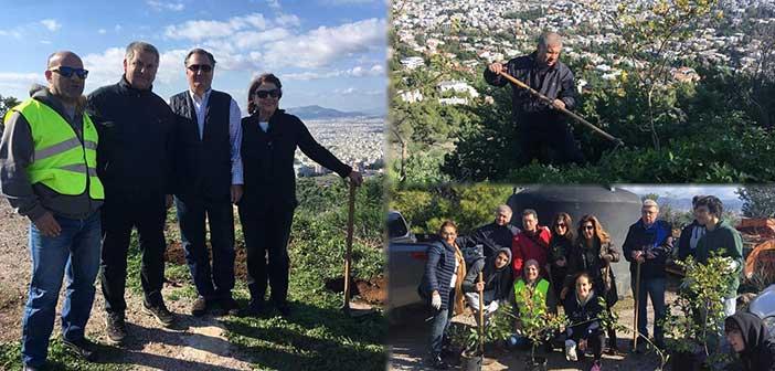 Ο πρόεδρος του ΣΠΑΠ σε εθελοντική αναδάσωση στον Λόφο Φιλοθέης