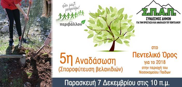 ΣΠΑΠ: «Ραντεβού» αναδάσωσης την Παρασκευή 7/12 για εθελοντές, μαθητές και ευαισθητοποιημένους πολίτες