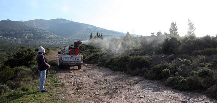O ΣΠΑΠ ξεκίνησε πιλοτικό πρόγραμμα βιολογικών ψεκασμών για τις κάμπιες στις αναδασωμένες περιοχές του Κοκκιναρά