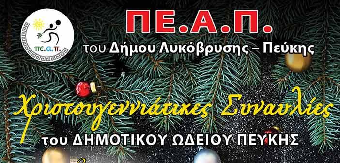 Ξεκινούν οι χριστουγεννιάτικες συναυλίες του Δημοτικού Ωδείου Πεύκης