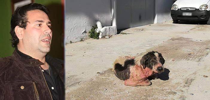 Γ. Δελής: Να βρεθεί άμεση λύση στο χάος που επικρατεί στη Μεταμόρφωση με τα αδέσποτα ζώα