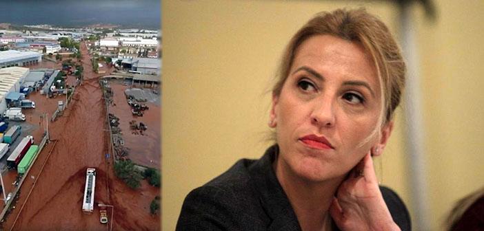 «Καταπέλτης» για την Περιφέρεια Αττικής το εισαγγελικό πόρισμα για τη Μάνδρα