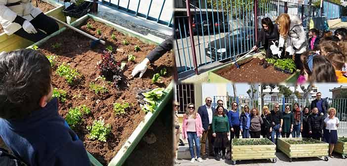 Μικροί λαχανόκηποι μέσα στα σχολεία του Ηρακλείου Αττικής