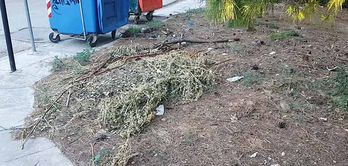 Σκουπίδια και ξερά κλαδιά στο ρέμα Μελισσίων – Οι κάτοικοι ακόμη περιμένουν να τα μαζέψει ο Δήμος