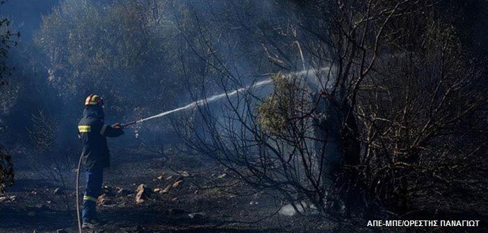 Πυροσβεστική: Υπό μερικό έλεγχο πυρκαγιά στα όρια Φιλοθέης – Γαλατσίου