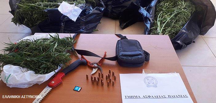 Συνελήφθη στην Παιανία 29χρονος αλλοδαπός που διακινούσε ναρκωτικά