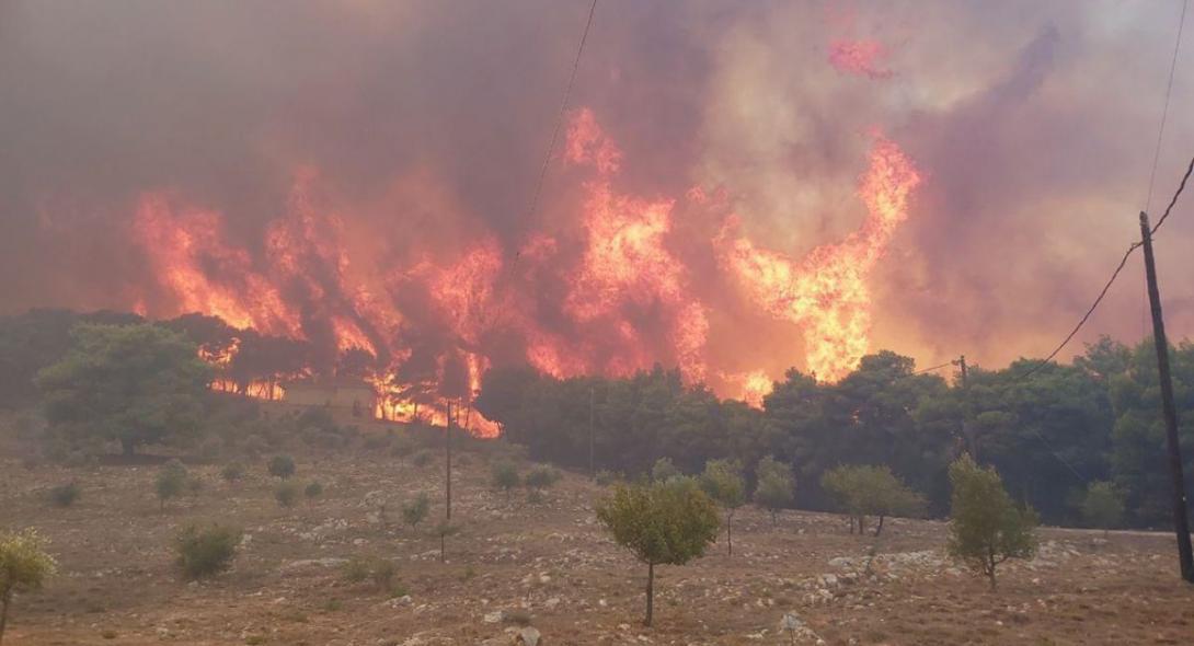 Στάχτη πάνω από 10.000 στρέμματα σε Ζάκυνθο και Λουτράκι από τις πρόσφατες φωτιές