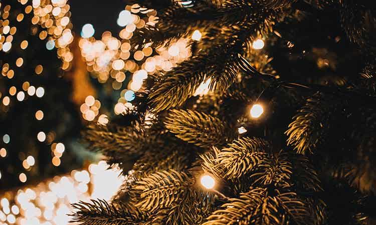 Στην πλατεία Χρυσοχόου Νέου Ψυχικού το χριστουγεννιάτικο δένδρο του Δήμου Φιλοθέης – Ψυχικού