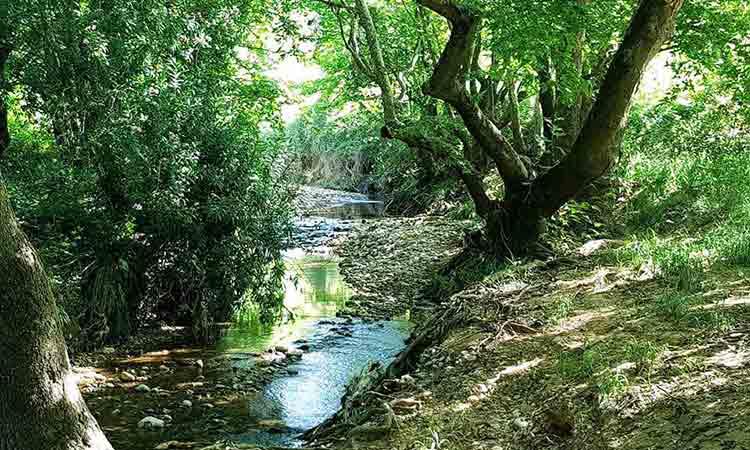 Σε πρόγραμμα για τον Κηφισό ποταμό εντάχθηκε ο Δήμος Κηφισιάς