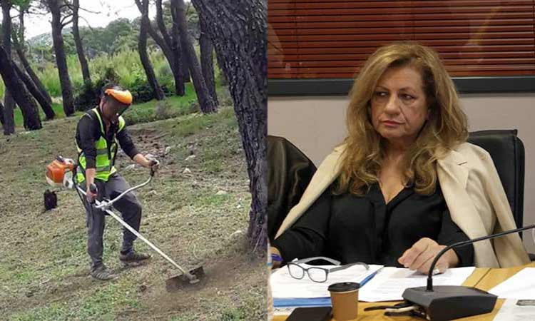 Ελ. Δάβαρη: Να διαφυλάξουμε τις εστίες πρασίνου στην Αγία Παρασκευή
