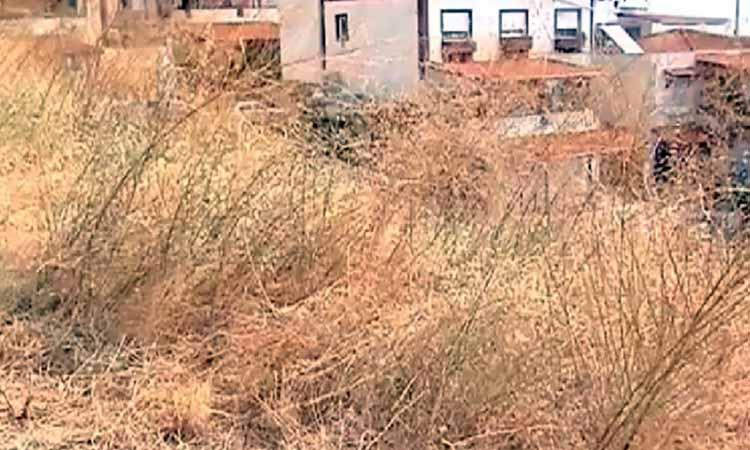 Σύσταση του Δήμου Βριλησσίων προς ιδιοκτήτες να καθαρίσουν τα οικόπεδά τους