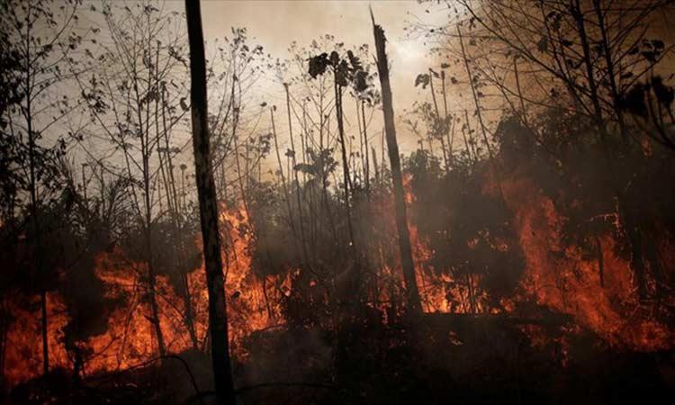 Βραζιλία: Ο υψηλότερος αριθμός πυρκαγιών τα τελευταία 13 χρόνια καταγράφηκε τον Ιούνιο στον Αμαζόνιο