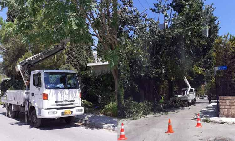 Κλαδεύονται δένδρα και απελευθερώνονται καλώδια φωτισμού από συνεργεία του ΔΕΔΔΗΕ σε Πεύκη και Λυκόβρυση
