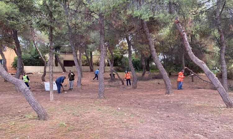 Κλάδεμα δέντρων και εργασίες καθαρισμού από την υπηρεσία Πρασίνου Δήμου Παπάγου-Χολαργού