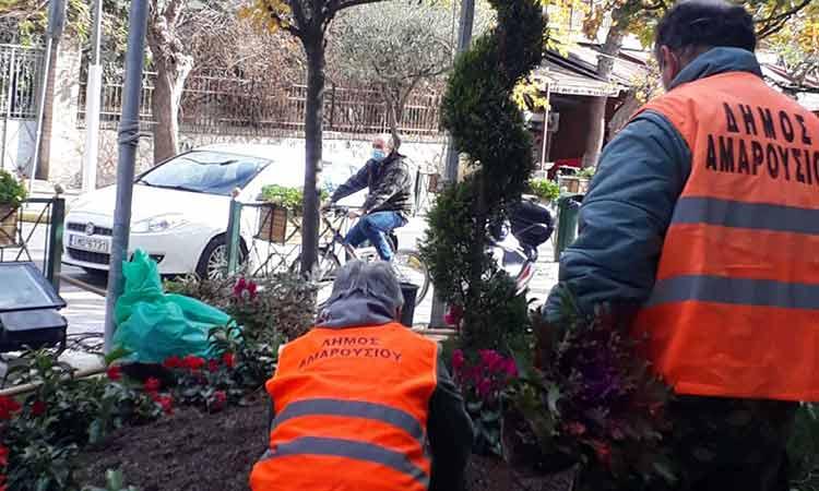 Τι απαντά ο Στ. Τσιπουράκης στο Ενωμένο Μαρούσι για τα κομμένα δέντρα