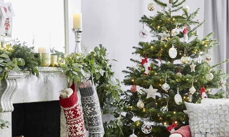 Αποκομιδή φυσικών χριστουγεννιάτικων δένδρων με ραντεβού στον Δήμο Κηφισιάς