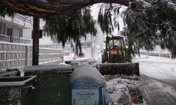 Αδιάκοπες οι προσπάθειες του Δήμου Αμαρουσίου για την απομάκρυνση των πεσμένων δένδρων