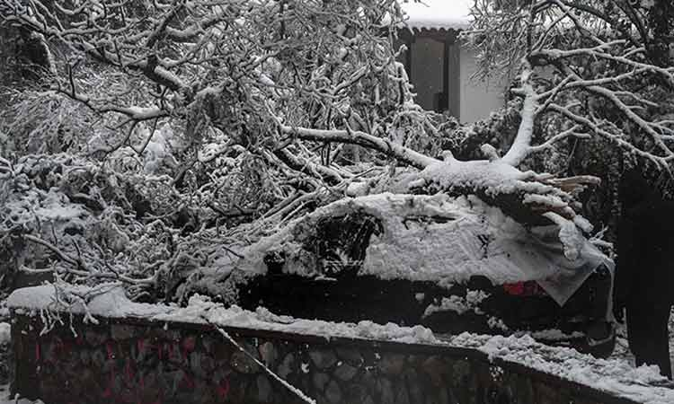«Μήδεια»: Σε κατάσταση έκτακτης ανάγκης… οσονούπω ο Δήμος Διονύσου