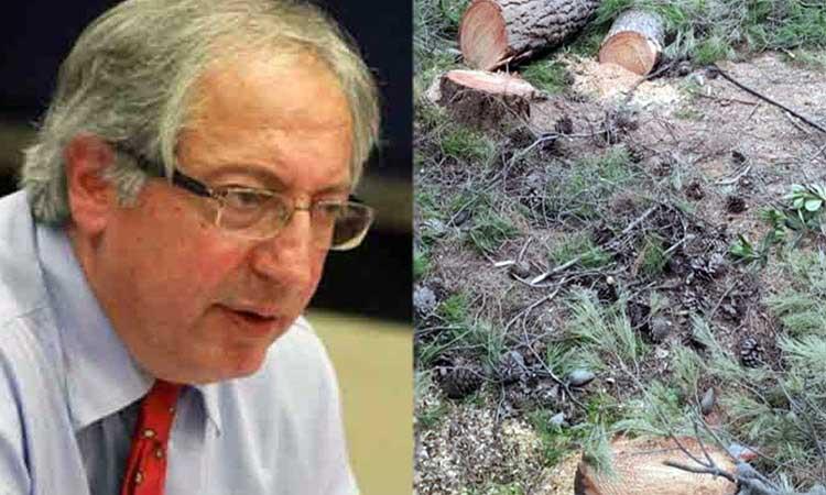 Ενωμένο Μαρούσι: Συλλήψεις στην Αγία Φιλοθέη για κοπή δένδρων – Δεν είναι «φάρμακο» η πριονοκορδέλα κ. Αμπατζόγλου