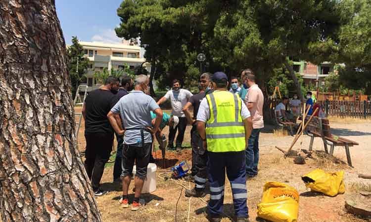 Δράση δενδροφύτευσης από μέλη της παράταξης Νέα Πνοή στο πάρκο «Μ. Θεοδωράκης» στα Βριλήσσια