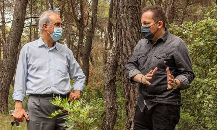 Αυτοψία Γ. Θωμάκου και Στ. Πέτσα στα δάση Καστρίτσας και Φασίδερι στον Δήμο Κηφισιάς
