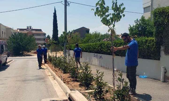 Φυτεύσεις καλλωπιστικών και αρωματικών φυτών στα Βριλήσσια