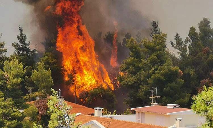 Μεγάλη φωτιά στη Σταμάτα Αττικής