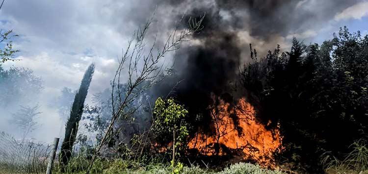 Φωτιά Κερατέα: Οριοθετήθηκε η πυρκαγιά – Προσαγωγή υπόπτου