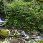 conv0017 150x150 - 的様の滝