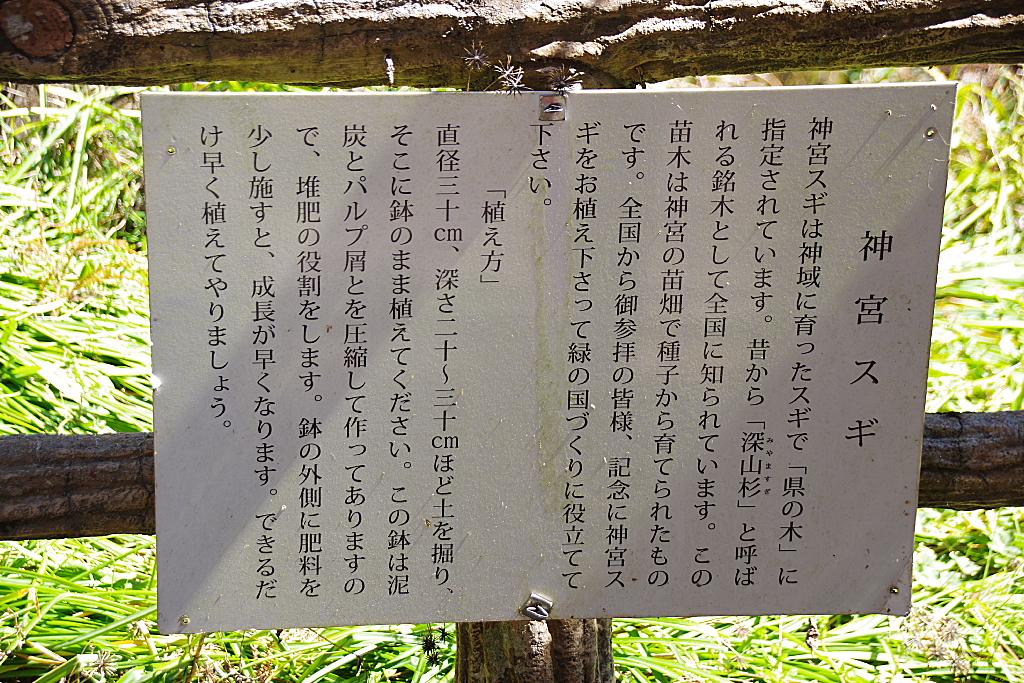 conv0005 - 朝日滝  熊久保農村公園