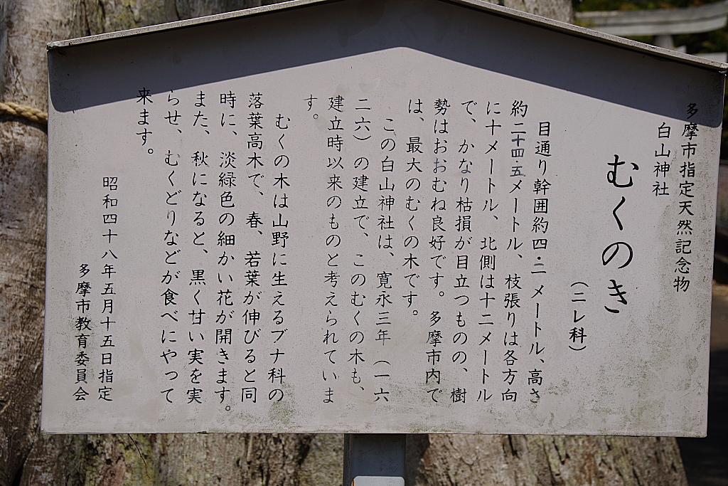 conv0004 - 白山神社