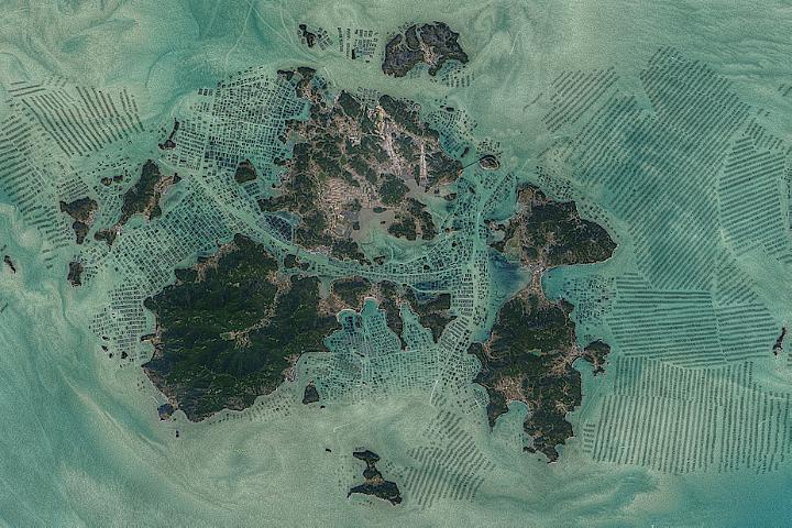 Green Harvest in South Korean Waters