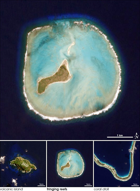 Island Evolution Part 2 Oeno Island Image Of The Day