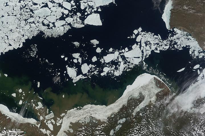 Mar del retroceso del hielo en el mar de Beaufort