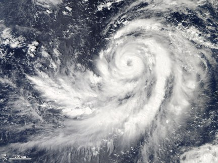 Typhoon Francisco