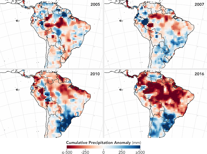 Conditions Are Ripe for an Intense Fire Season in Amazonia