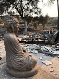 buddhafire