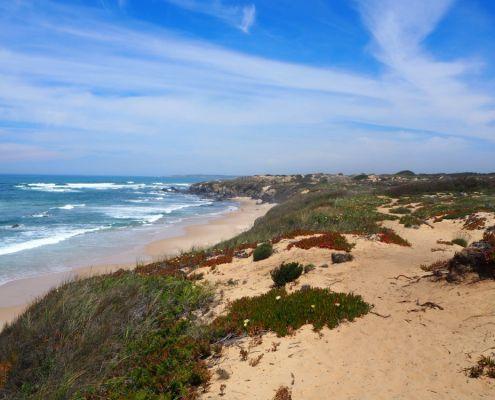 spiaggia sul Cammino dei Pescatori