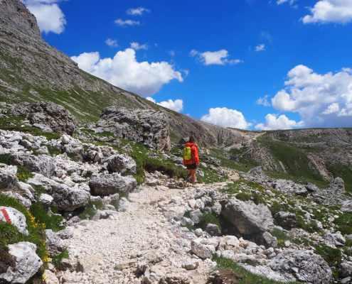panorama sentiero Sassopiatto